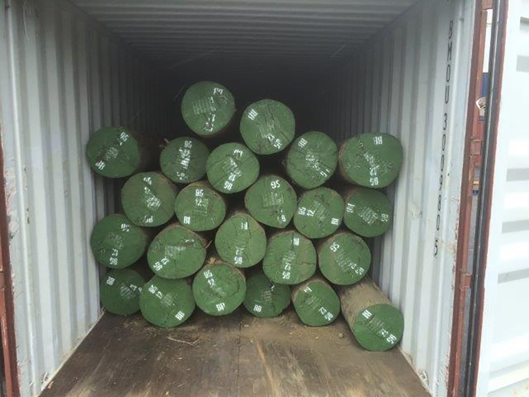 Logs in container 2